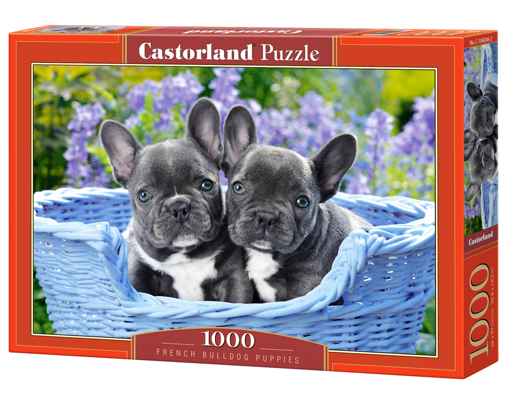 Puzzle Castorland French Bulldog Puppies 1000 dílků