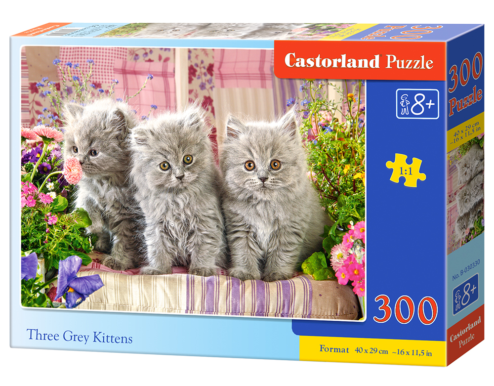 Puzzle Castorland Three Grey Kittens 300 dílků